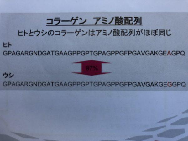 コラーゲンのアミノ酸配列