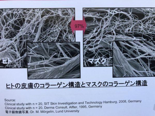 人の皮膚のコラーゲン構造とマスクのコラーゲンの構造比較写真