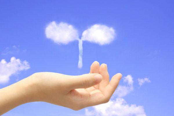 手の平の上に雲の芽が載っているイメージ画像