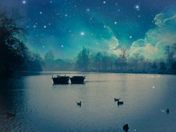 森の湖の幻想的な風景