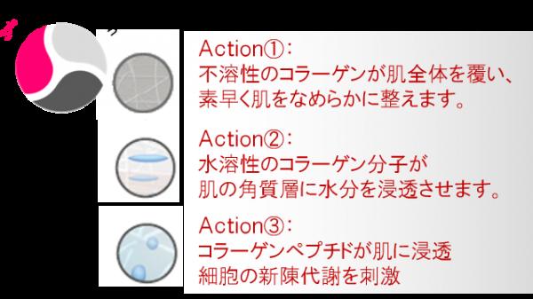 コラーゲンの3つのアクション