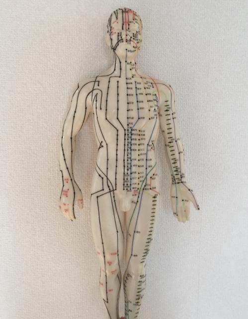 東洋医学の経絡・経穴のイメージ画像
